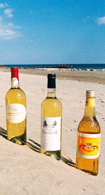 Muscats on a Languedoc beach's - © Ville de Frontignan